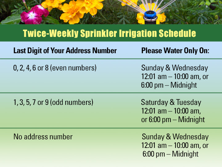 twice weekly sprinkler irrigation schedule
